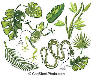 tropicale, foglie, set, rettili