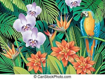 tropicale, fondo, fiori esotici
