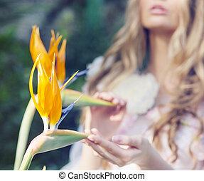 tropicale, immagine, fiori, toccante, signora