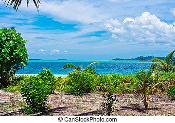 tropicale, isola, Deserto, paesaggio