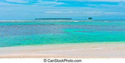 tropicale, Isole, oceano