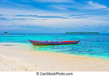 tropicale, Isole, paesaggio