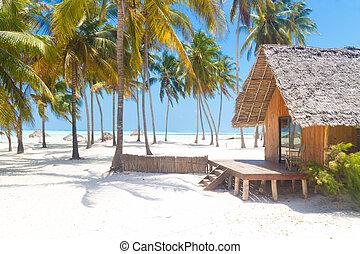 tropicale, legno, bungalow, sabbioso, spiaggia., bianco