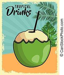 tropicale, manifesto, noce di cocco