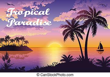 Nave Silhouette Paesaggio Palme Mare Paesaggio Mare Isola