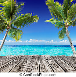 tropicale, marina, con, asse legno