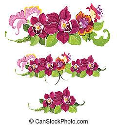 tropicale, modello, fiore, elementi