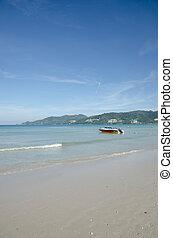tropicale, motoscafo corsa, spiaggia