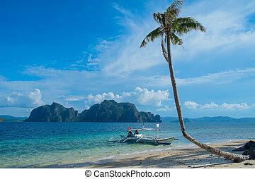 tropicale, paesaggio
