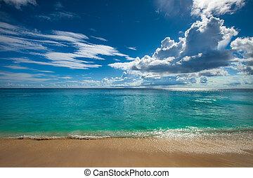 tropicale, perfetto, isola, fondo., vacanza, spiaggia.