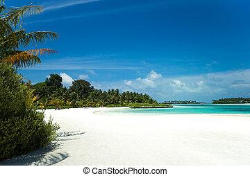 tropicale, perfetto, isola paradiso