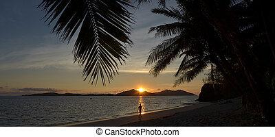tropicale, persona, tramonto, camminare, durante, spiaggia