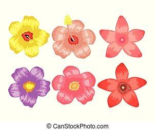 tropicale, piante, fiori, set