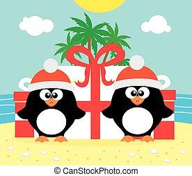 tropicale, pinguini, due, fondo, natale