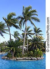 tropicale, Ricorso, Figi