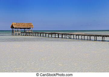 tropicale, ricorso, spiaggia