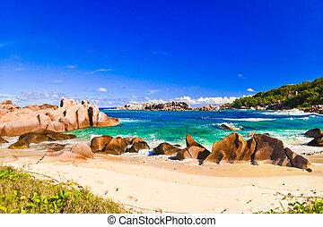 tropicale, seychelles, spiaggia