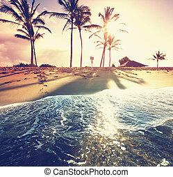 tropicale, spiaggia