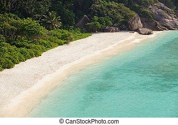 tropicale, spiaggia bianca, sabbioso