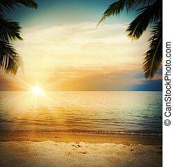 tropicale, spiaggia tramonto