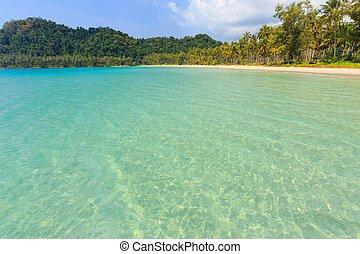 tropicale, tailandia, riva, mare