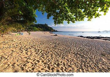 tropicale, tailandia, spiaggia
