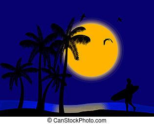 tropicale, tramonto, paradiso