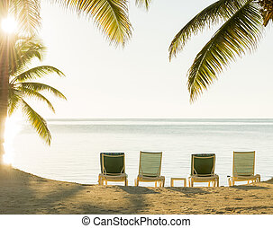 tropicale, tramonto, sopra, spiaggia, deckchairs