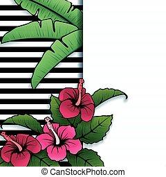 tropicale, vibrante, ibisco, bandiera