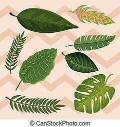 tropicals, pousse feuilles, heliconia, fond, fleur