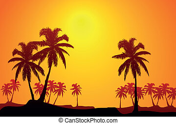 tropico, alba