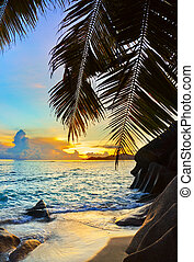 tropikalna plaża, zachód słońca