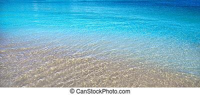 tropikalna woda, jasny, plaża, przeźroczysty
