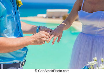 tropikalny ślub, brzeg, ceremonia, kreska