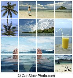 tropikalny, święto, -, śni, raj