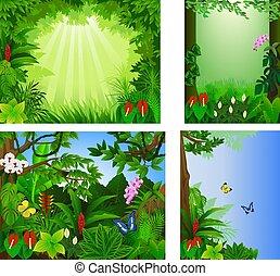 tropikalny, cielna, wektor, las, komplet, ułożyć, piękny, ilustracja, ikona