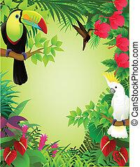 tropikalny, dżungla, ptak