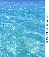 tropikalny, doskonały, turkus, plaża, błękitny polewają