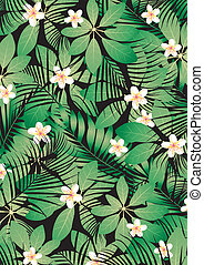 tropikalny, frangipani