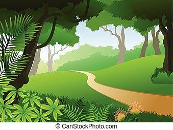 tropikalny, karta, las, tło