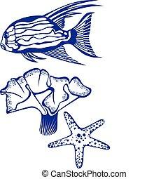 tropikalny, koral, fish, starfish.