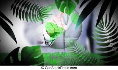tropikalny, kula, ożywienie, roślina