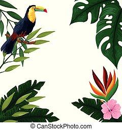 tropikalny, lato, ułożyć, karta, czysty