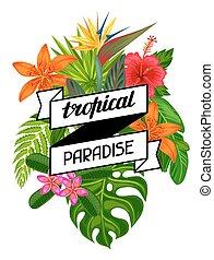 tropikalny, liście, booklets, stylizowany, flowers.,...