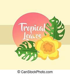tropikalny, liście, monstera, ozdoba, dłoń, chorągiew, okrągły