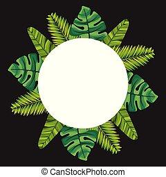 tropikalny, liście, monstera, ozdoba, dłoń, ułożyć