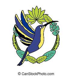 tropikalny, liście, ptak, hummingbird