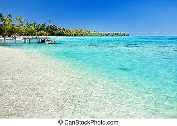 tropikalny, mały, molo, woda, zdumiewający, plaża