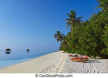 tropikalny, malediwy, plaża