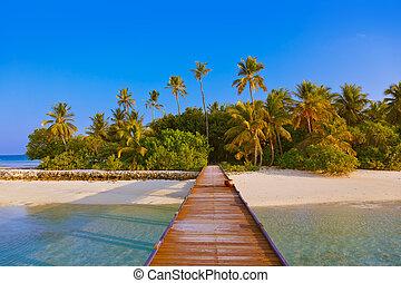 tropikalny, malediwy, wyspa